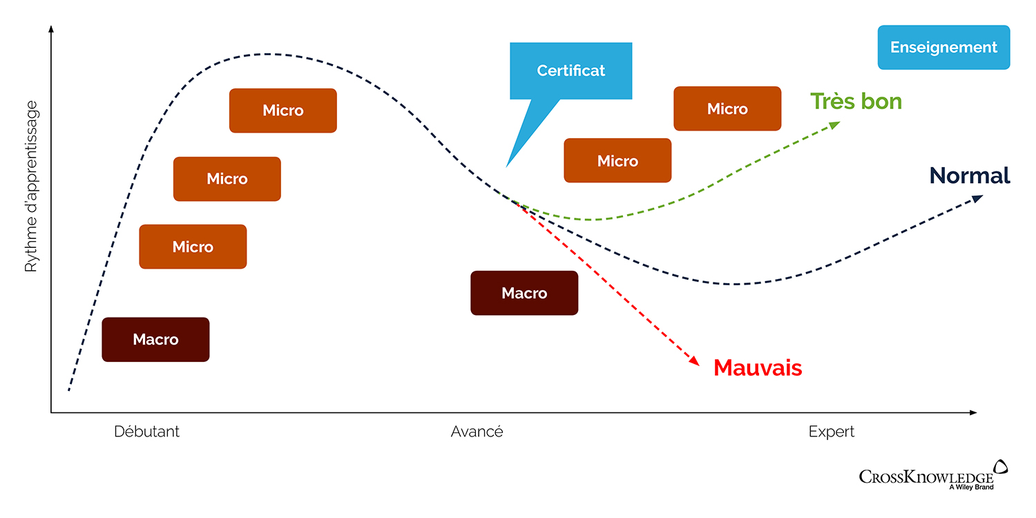 les moments qui comptent : combiner micro et macro-learning