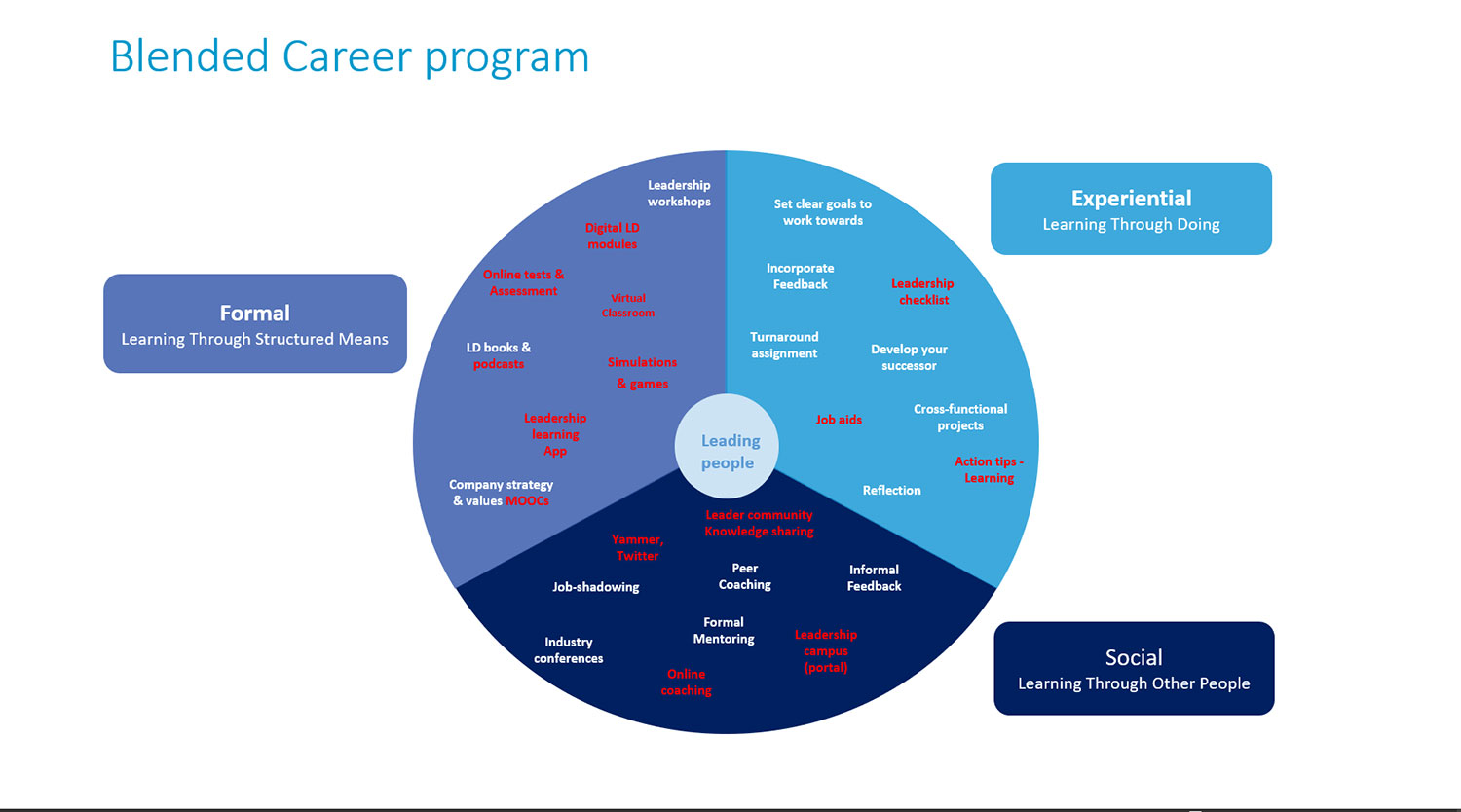 Blended Career Program